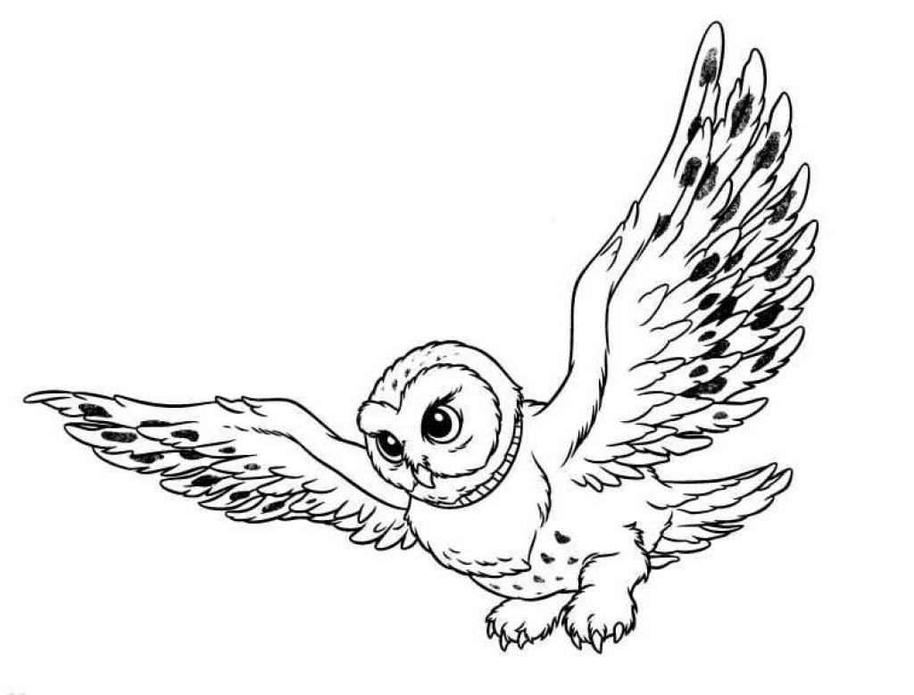 snowy owl coloring 1 likewise  likewise 921798a9d4e7817c2249da58131922d7 as well snowy owl coloring page moreover mandala to download in pdf 6 additionally  furthermore  likewise c0e98bd18adb9b10631d60ab250618a2 moreover Mandala Coloring Pages 17 1024x1013 also  also e9c2fd65675283c09c508d9d68a09a04. on mandala coloring pages snow owl